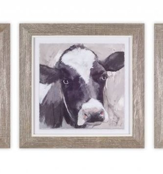 "10"" Square Framed Cow Print ( 3 Styles)"