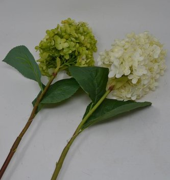 Fresh Cone Hydrangea Stem (2 Colors)