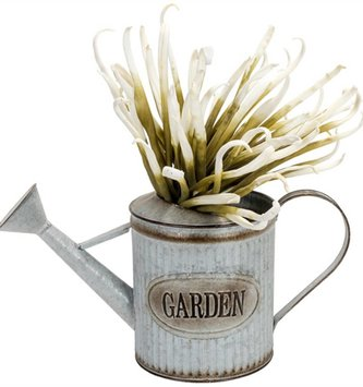 Ribbed Garden Watering Can