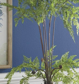 """25"""" Potted Wild Leather Fern"""