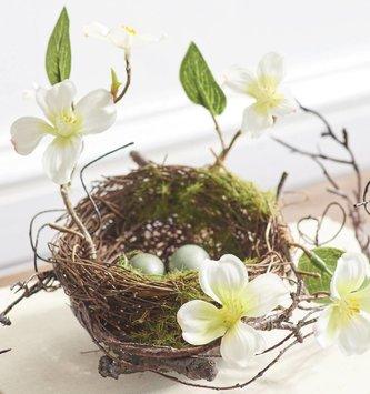 Dogwood Twig Nest with Eggs