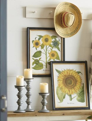 "24"" Sunflower Botanical Print (2 Styles)"