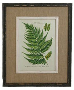 Large Burlap Fern Print (6 Styles)