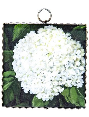 Hydrangea Small Painted Print