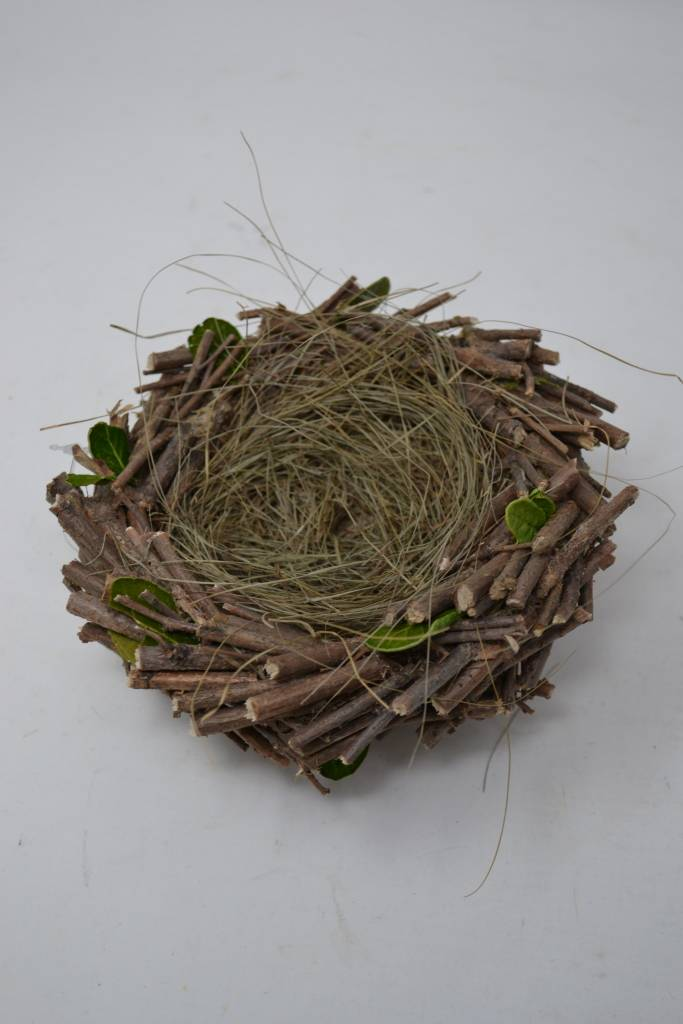 Twig Nest with Leaves
