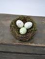Triple Egg Mini Bird Nest