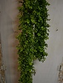 6-ft. Soft Touch Eucalyptus Garland