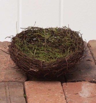 "5"" Nest w/ Moss"