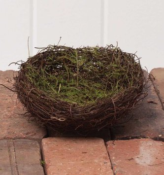 """5"""" Nest with Moss"""