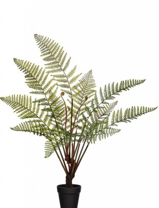"""41"""" Potted Fern with Fronds"""
