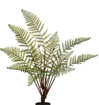 "41"" Potted Fern with Fronds"