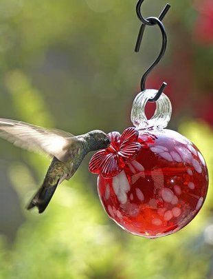 Droplet Hummingbird Feeder (3 Styles)