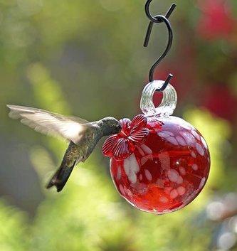 Droplet Hummingbird Feeder (3 Styles)