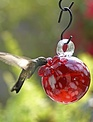 Droplet Hummingbird   (3 Styles)