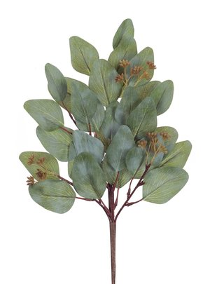 Seeded Eucalyptus Pick
