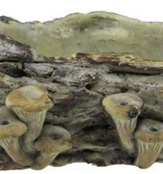 Small Log Planter w/ Mushrooms