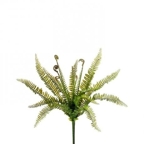 Natural Touch Ladder Fern Bush