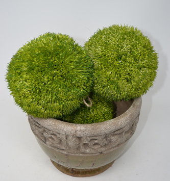 "6"" Green Barley Orb"