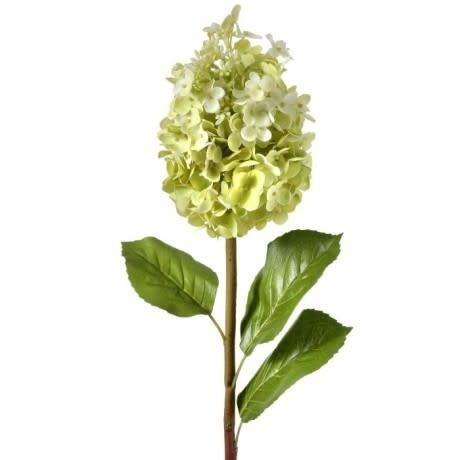 Natural Touch Queen Hydrangea