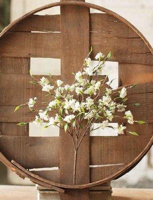 Mini Cream Bliss Flower Bush