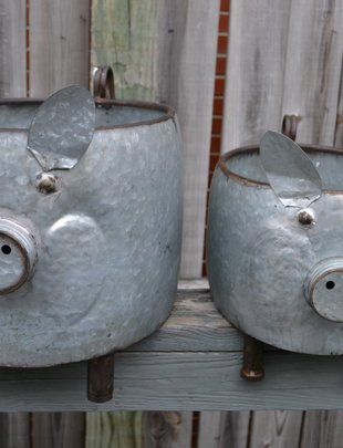 Galvanized Oval Pig Planter