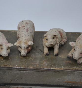 Mini Rustic Pig