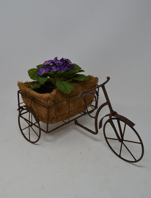 Rustic Tricycle Planter
