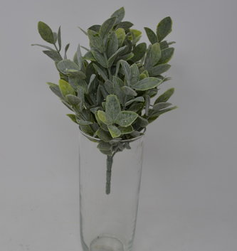 "10"" Dusty Leaf Bush"