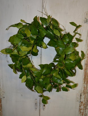 "24"" Lemon Leaves Wreath"
