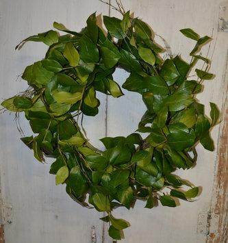 "24"" Lemon Leaves Wreath"