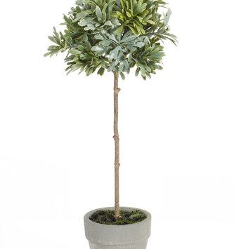 """12"""" Potted Mini Topiary"""