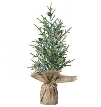 Frosted Pine Tree in Burlap