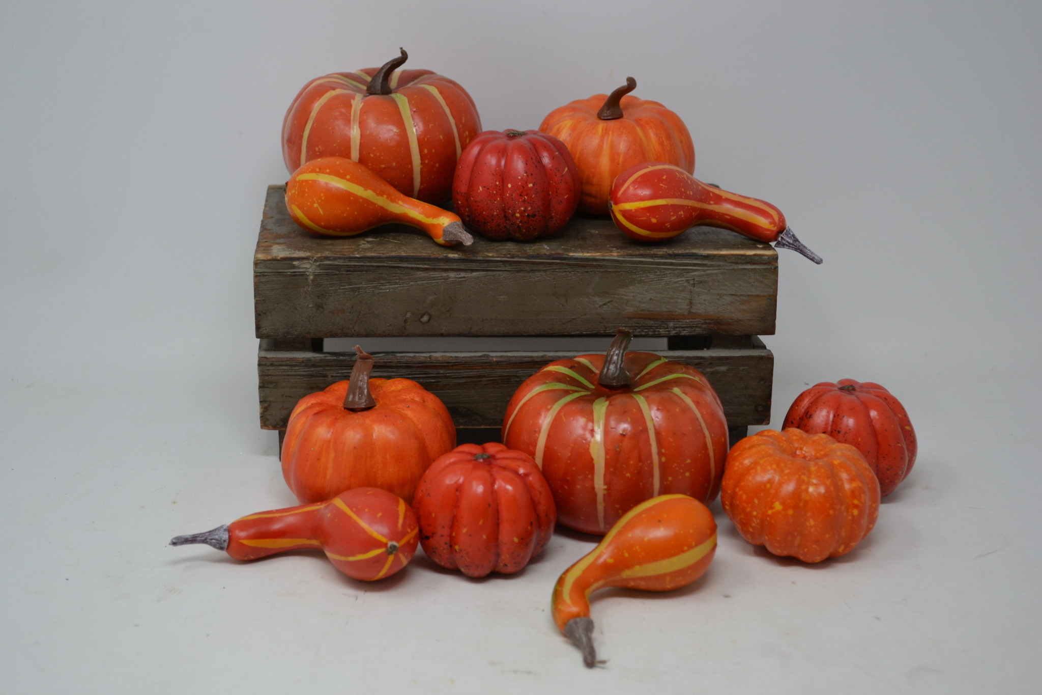 Mixed Bag of 12 Pumpkins and Gourds
