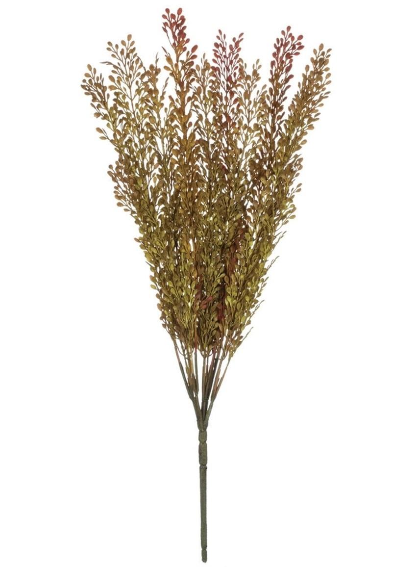 Autumn Seed Grass Bush