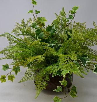 Custom Fern & Ivy Arrangement in Round Pot