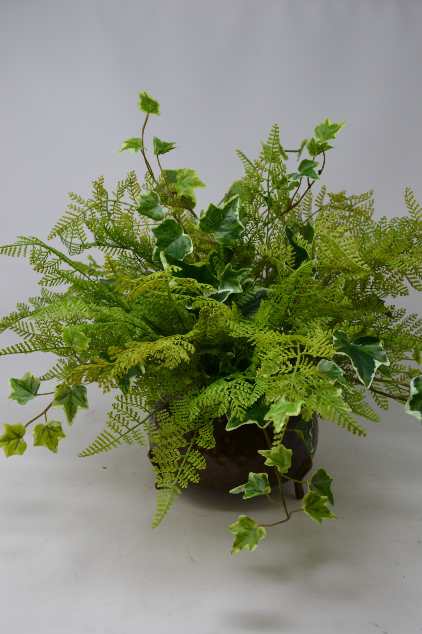 Custom Fern & Ivy Arrangement in Round Pot
