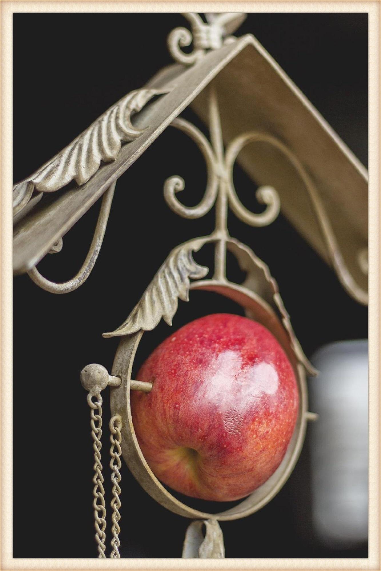 Metal Scroll Apple Feeder
