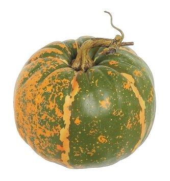 Round Green Orange Speckled Pumpkin