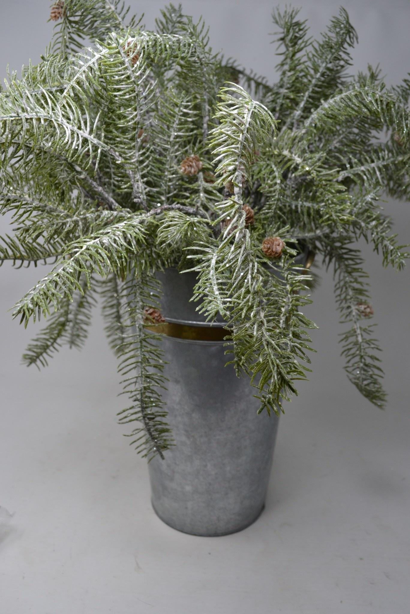 Trailing Shimmer Pine Pick