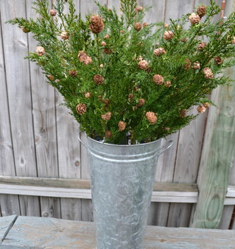 "31"" Mini Cone Cypress Spray"