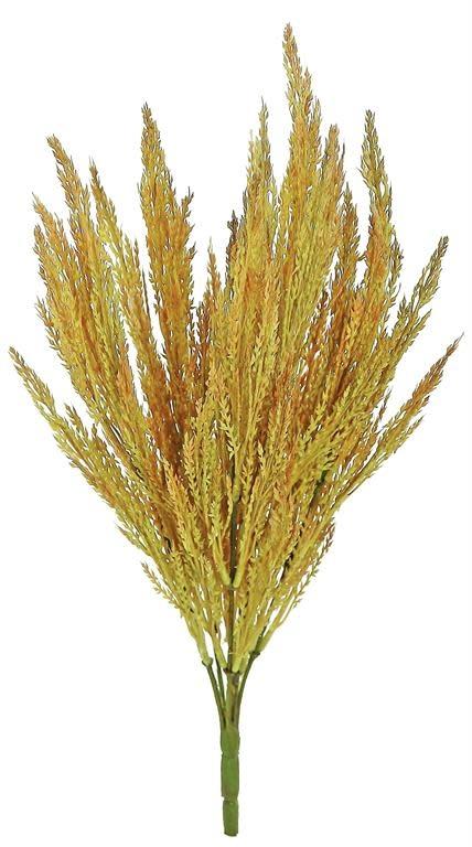 """13"""" Wild Grain Bush"""