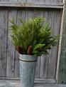 Mixed Greenery Pinecone Spray