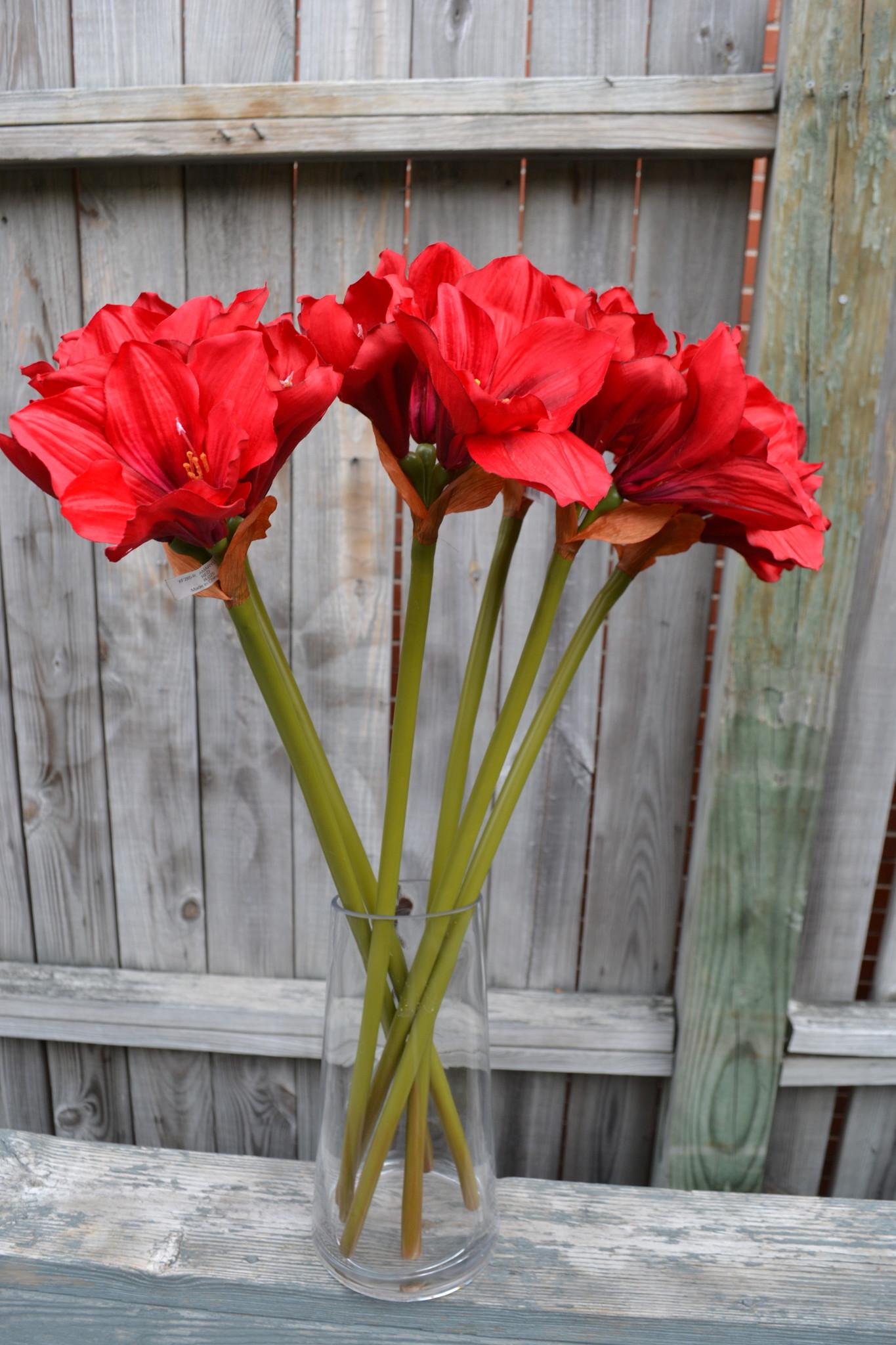 """28"""" Red Amaryllis Stem"""