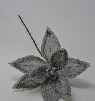 Gray Linen Frost Poinsettia