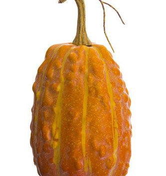 "9"" Tall Lumpy Orange Gourd"