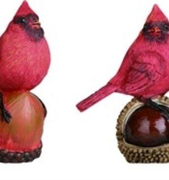 Mini Cardinal on Nut (4 Styles)