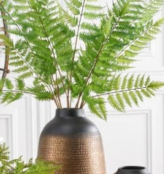 "35"" Wild Fern Spray"