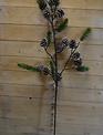 """39"""" Balsam Pinecone Branch"""