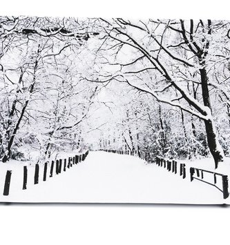 LED Tabletop Winter Path Canvas