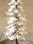 Metal Snowy Christmas Tree (3 Sizes)